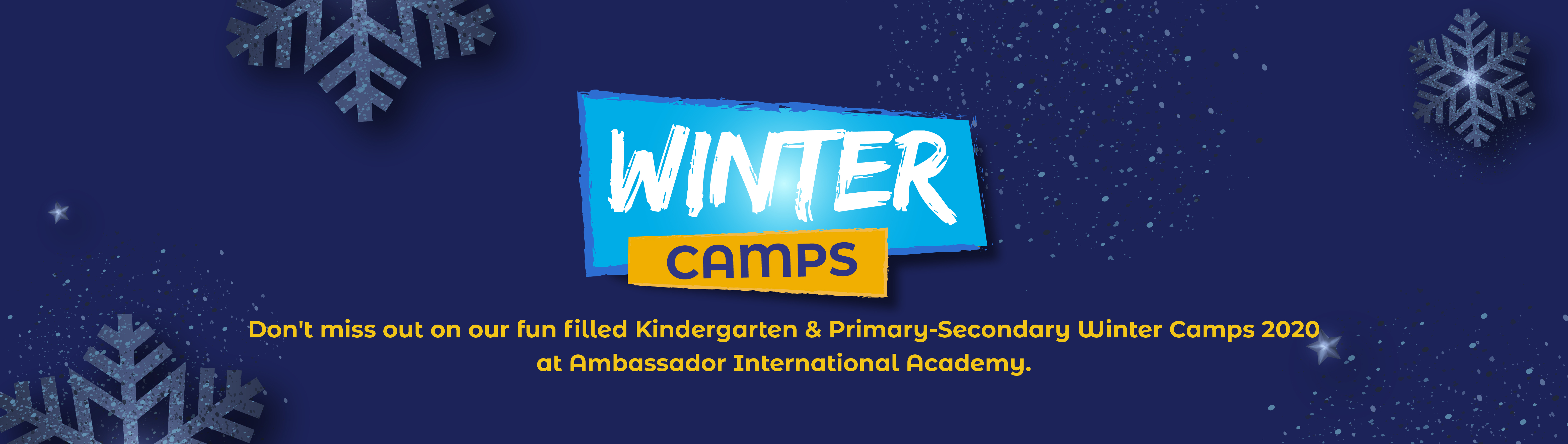 AIA-Winter Camps